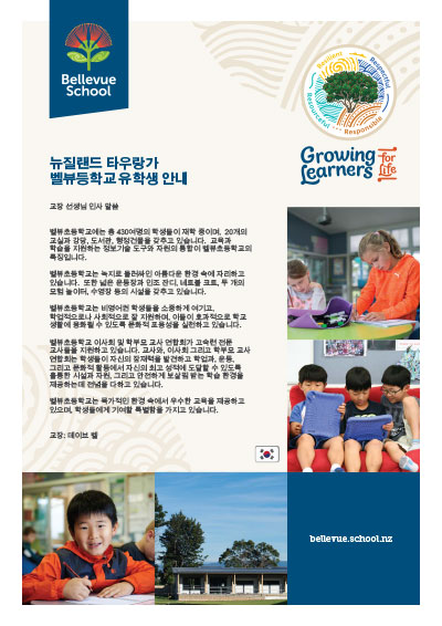 Korean-Brochure-image